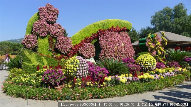 绿化 雕塑-植物造型设计.jpg 原始尺寸:800 * 450