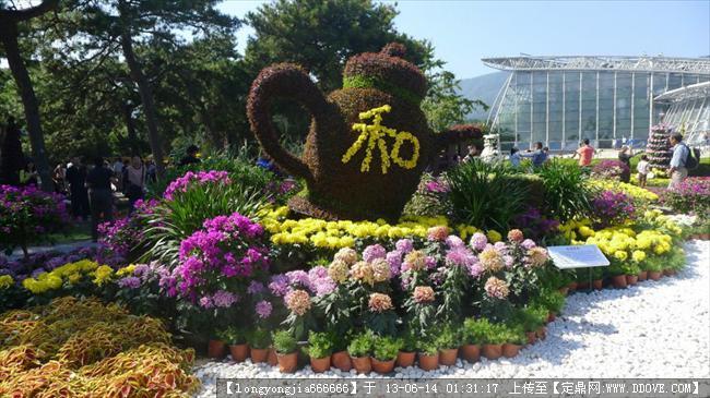 綠化 雕塑-植物造型設計