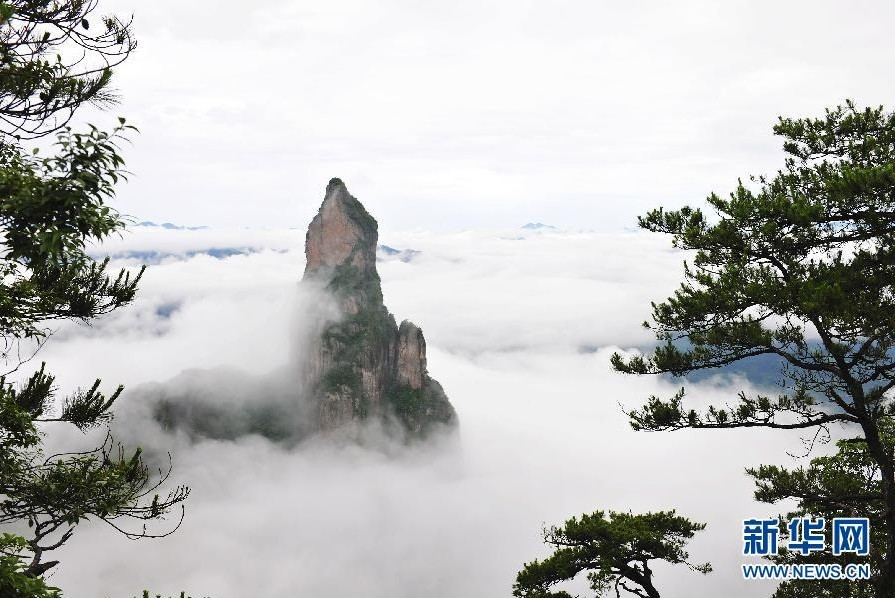 當日,浙江臺州神仙居風景區云霧繚繞,群巒若隱若現,置身其中,如入人間