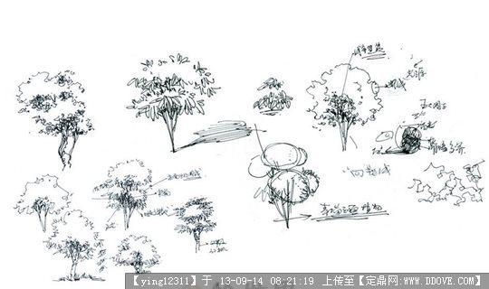 建筑景观手绘线稿()