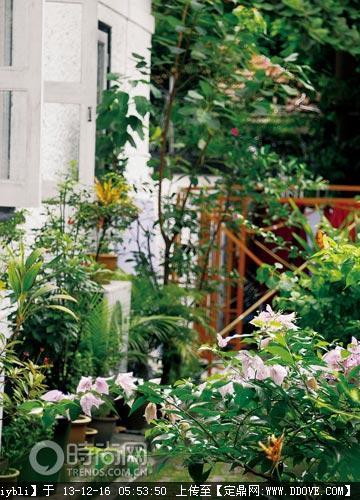 私家庭院实景 农村别墅庭院设计实景 现代风格私家庭院