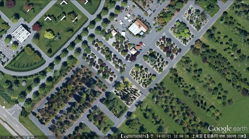 树的博物馆 平面图