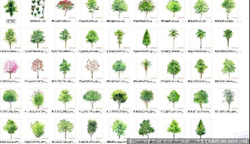 植物手绘素材的下载地址,配景素材,园林植物,园林建筑