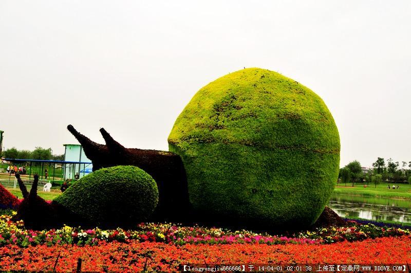 生态动物雕塑 017