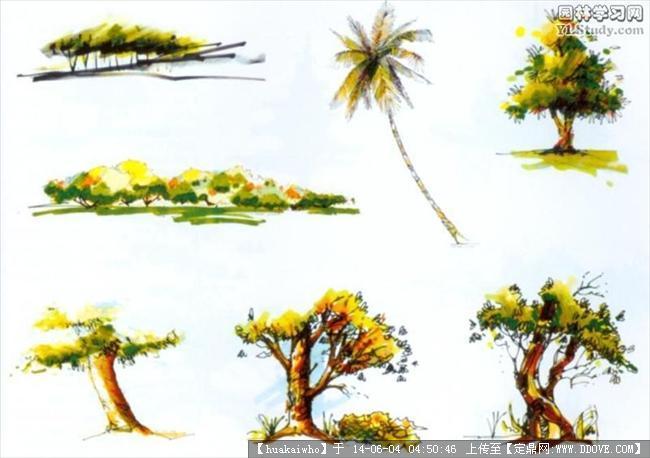 园林植物配置图的图片浏览,园林效果图,手绘效果,园林