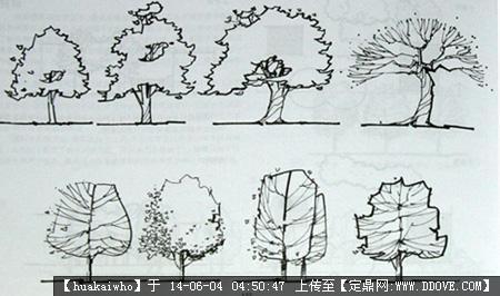 园林效果图,手绘效果,园林