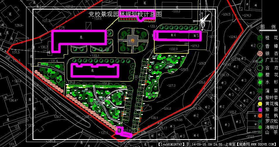 某黨校庭院園林景觀規劃設計平面圖