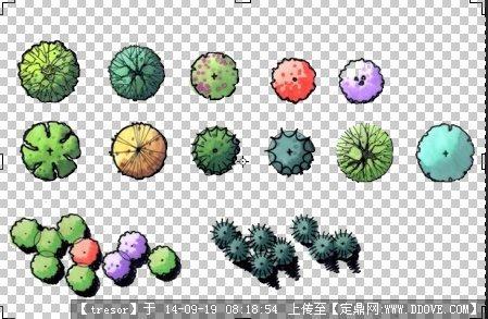 ps植物素材平面图例