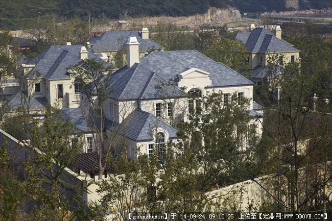 经典法式独栋别墅实景照片21图片