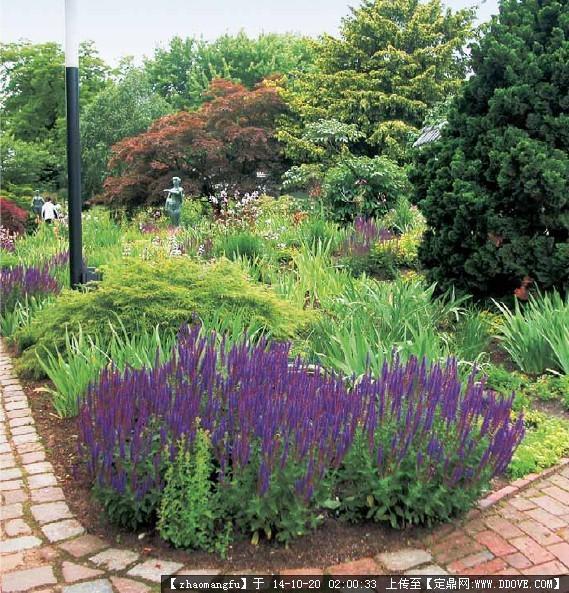 植物配置,花镜设计参考实景图片的图片浏览,园林节点