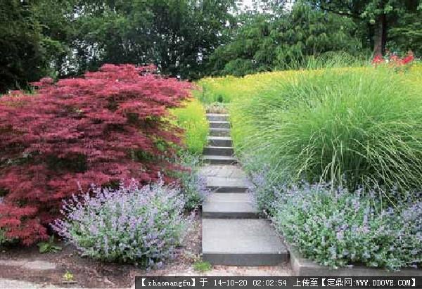 植物配置,花镜设计参考实景图片的图片浏览