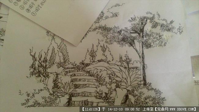 公园广场园林景观手绘效果图