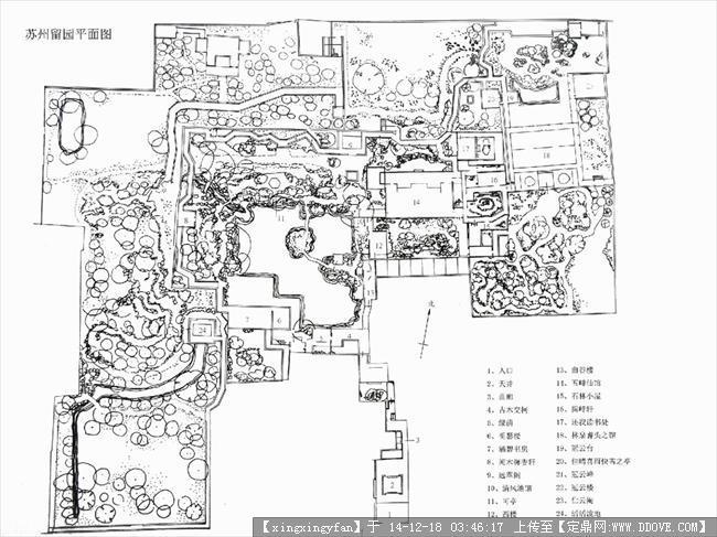 十米乘16米的平面,一楼商店,二楼家庭住房设计图展示图片