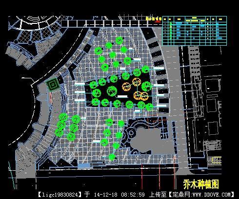 定鼎网 定鼎园林 园林施工详图 种植设计 迪荡小广场乔木种植图  序号