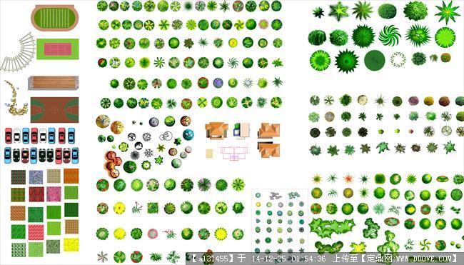 南方植物ps平面图深圳致上家具设计图片