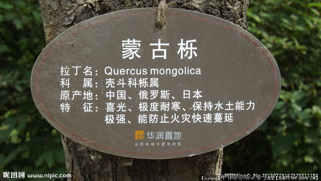 小区树名标识牌图片
