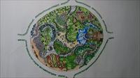 公园园林景观平面图